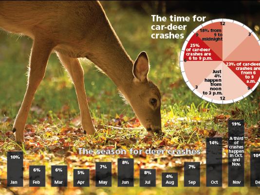 636437596354022060-car-deer-crases.png