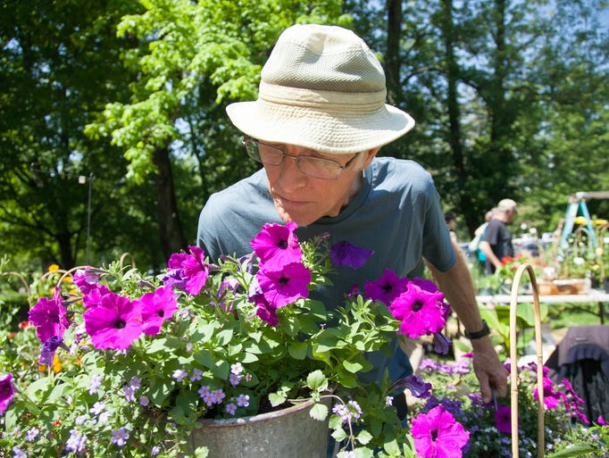 Richard Gilbert with Old Thyme Log House Gardens picks up a basket of petunias he sold to a customer. May 11, 2014