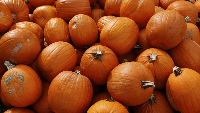 The Boone County Public Library will be hosting Halloween Spooktacular and trick or treat at each of its branches this year.