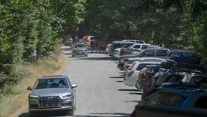 The Opal Creek Trailhead was busy on July 25, 2020.