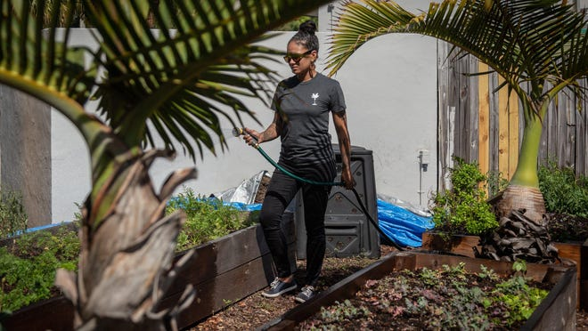 Boynton Beach restaurant Driftwood is operated by the husband and wife duo of Chef Jimmy Everett and Ilia Gonzalez Colon. Gonzalez Colon waters the vegetable garden at the restaurant on March 20.