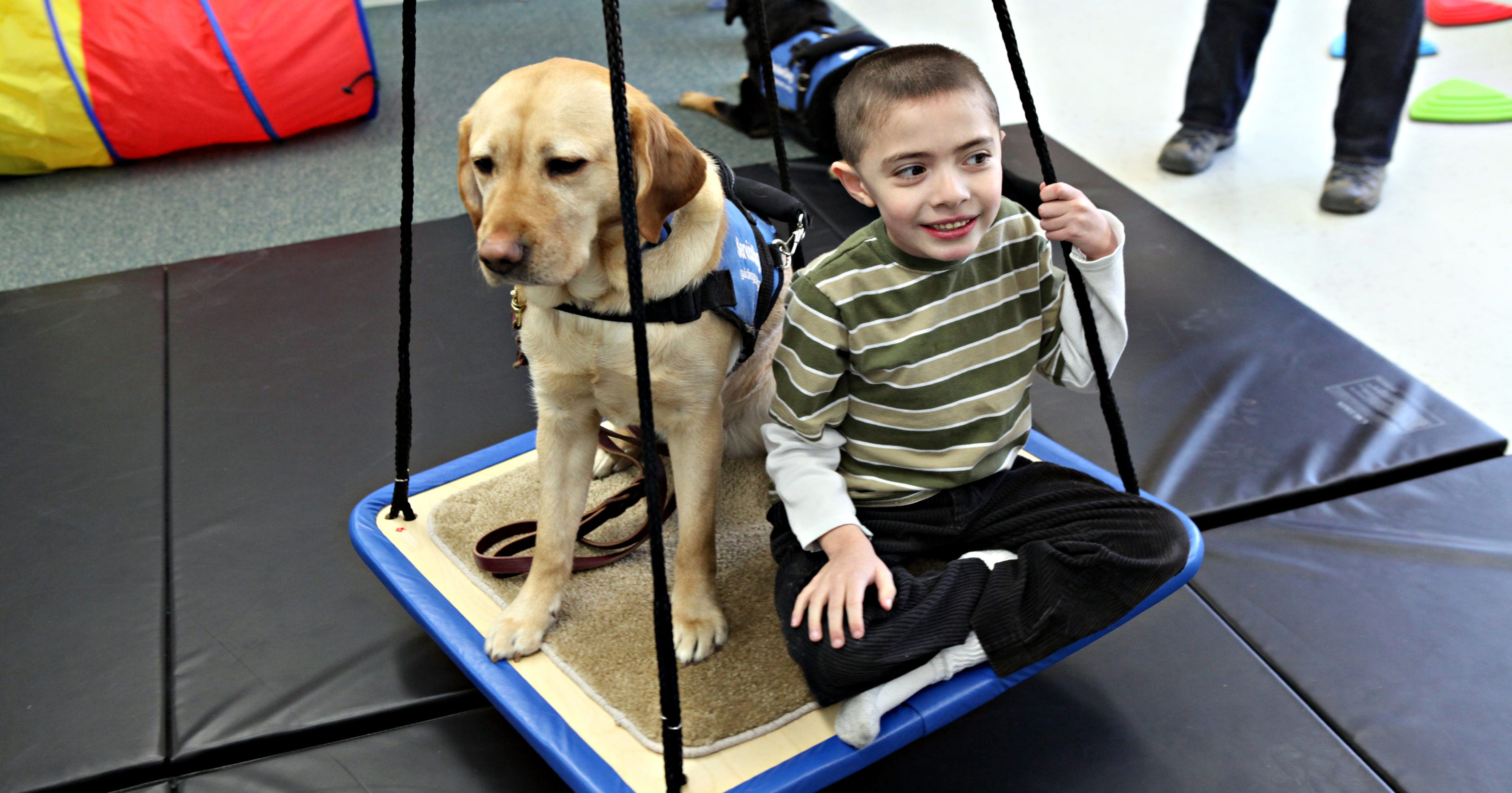Pets Bring Kids With Autism Out Of >> Trained In Calmness Dogs Help Autistic Kids