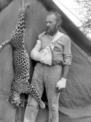 Carl Akeley posing in 1896 with the leopard that nearly killed him.