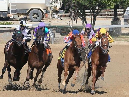 636362483380415400-horses.jpg