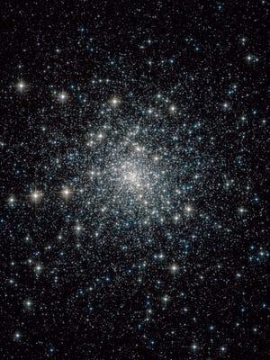 Capricornus constellation.