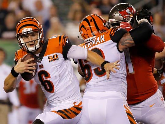 Cincinnati Bengals quarterback Jeff Driskel (6) scrambles