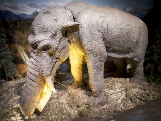 DFP ice age exhibit (2).JPG