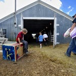 The livestock barns buzzes with activity in 2010 as 4-H kids and their animals arrive at the Judith Basin County Fair. The fair runs from Aug. 3 to Aug. 8 in Stanford.