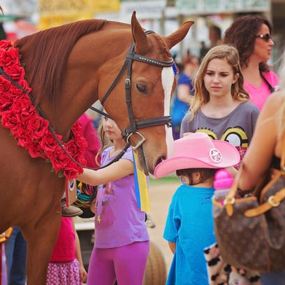 Scottsdale Arabian Horse Show spotlights beauty, nobility of skilled animals