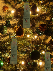 Angel Tree applications are being accepted  Tuesday through Friday this week at The Salvation Army office in Alexandria.