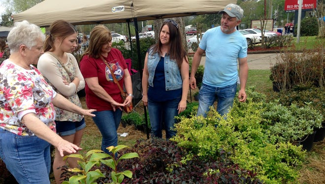 Tracy and Sandra Robinson (far right), owners of Fish Hatchery Nursery in Forest Hill, help customers pick out plants from their booth at the Louisiana Nursery Festival on Sunday. Shopping (from left) are Willie Forester, of North Carolina, and Elyse Terro and Cheryl Evans of Lafayette.