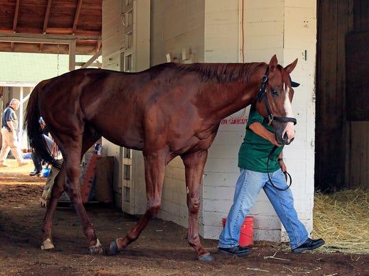Triple_Crown_Horse_Racing_32992.jpg