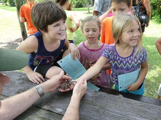 Brynna Fields,right, giggles as a Rosy Haired Tarantula crawls on heir arm during the annual Bug Fest Sunday, August 24, 2014, afternoon at Southeastway Park.