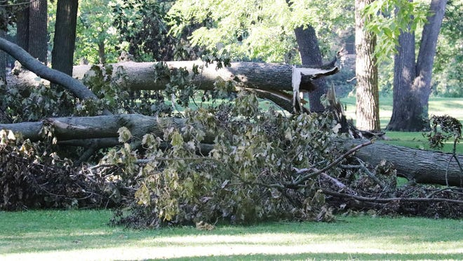 Many trees, branches and limbs are still in need of removal from Chautauqua Park. Pontiac Streets Department Superintendent Chris Brock told the city council earlier this week he was hopeful to get to Chautauqua after clearing the rest of the community of the storm damage sustained recently.