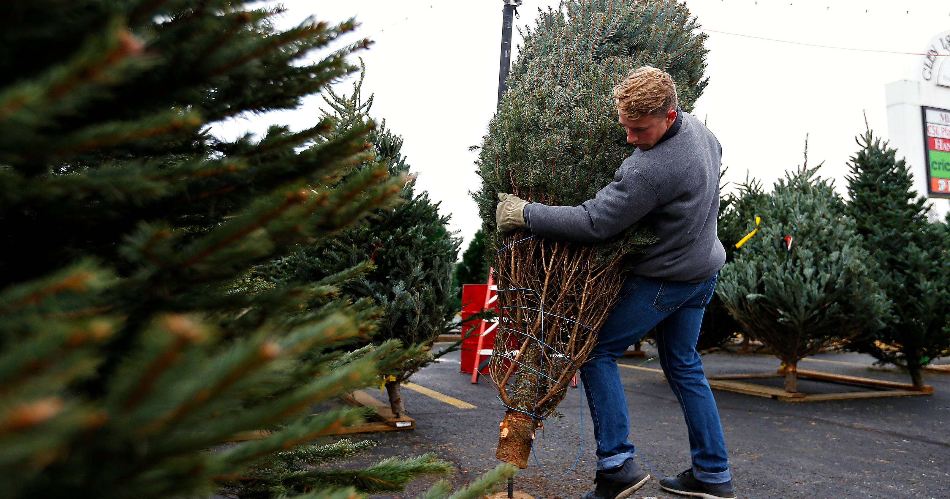 christmas is over heres where you can recycle your trees in sgf - Boy Scout Christmas Trees