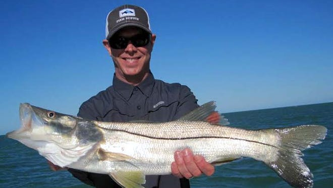 Bradley Miller's 27-1/2-inch snook was caught Tuesday on shrimp and released at the nearshore reefs off Bonita Beach, on his Fishbuster Charter.