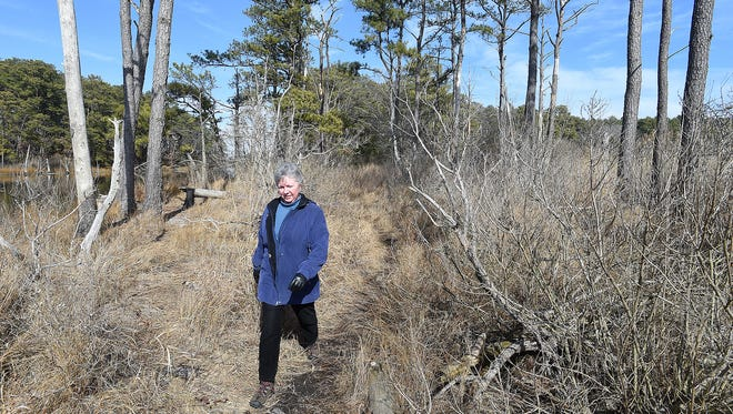 Delaware's state parks are open to the public at no charge December-February each year – one of the percs enjoyed by Delmarva residents in the off-season.
