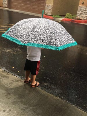 """""""This little fella is enjoying the rain,"""" says Sandra Km Delić of the pint-size weather watcher she photographed on Tuesday, Aug. 9, 2016."""