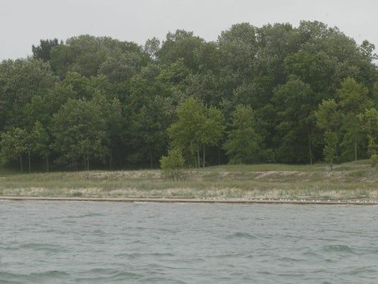amsterdam dunes