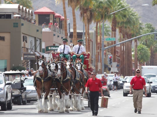 The Budweiser Clydesdales stopped at several spots along El Paseo Wednesday.