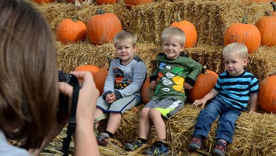 Twins Justin (left) and Jason Barber and Daniel Wedge get their photo taken at the pyramid of pumpkins at Pumpkinfest in 2015. This year's festival opens Friday.
