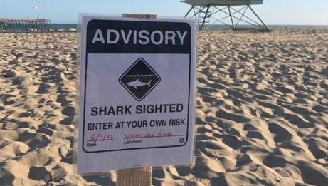 This file photo shows a warning sign that was posted in Ventura after a shark was seen in the area.