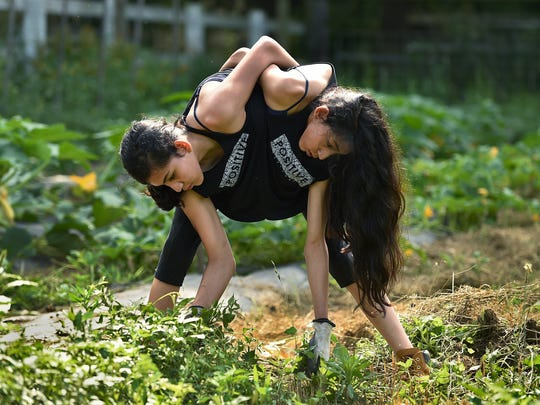 Conjoined twins Carmen and Lupita Andrade pull weeds