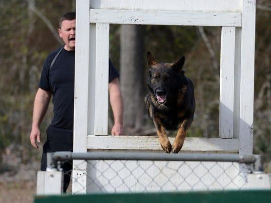 Ashton Brosnaham Dog Park