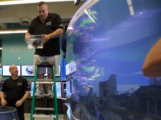 """Wayde King (right) and Brett Raymer of """"Tanked"""" work"""
