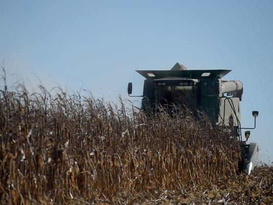 Patti Karn/FSA: Crop certification report due soon