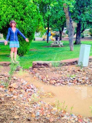 Claire Catlett shows green infrastructure at Noble Park.
