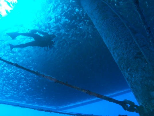 activator fish hungry жидкий