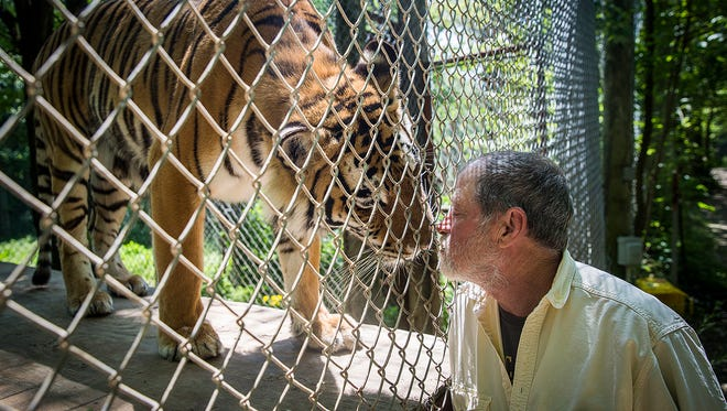 The Exotic Feline Rescue Center is home to more than 200 big cats, many of which come from the center's home state of Indiana.