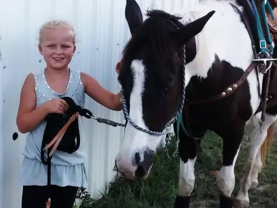 Chevy, a 5-year-old American Paint horse, stands with