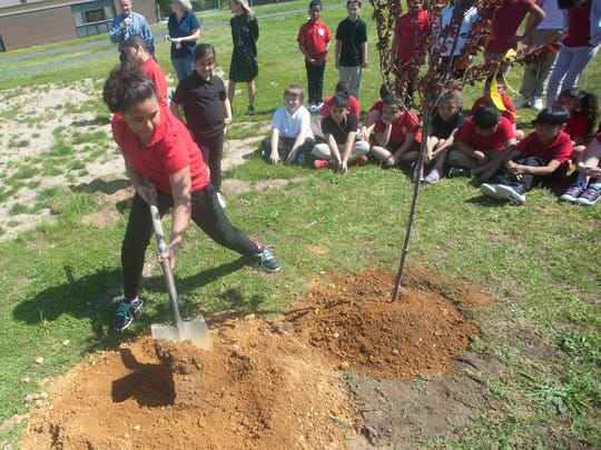 Fourth grade student, Kaylee Wright plants a tree in