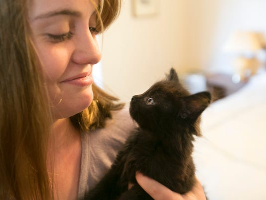 How creativity helps Maricopa County shelters save pets