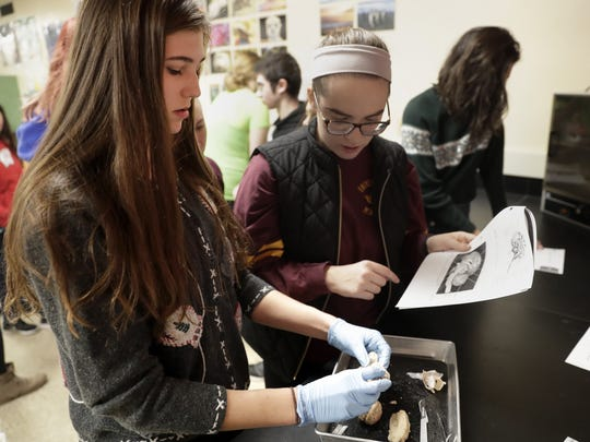Marin Kelly, a senior at Neenah High School, dissects a sheep's brain with lab partner Nicole Reitzer in their Human Biology class on Dec. 23.