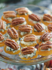5 minute apricot appetizers by Lehi Valley Trading Company of Mesa (inspired by Mm Good).