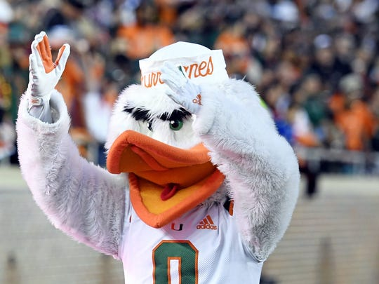 Nov 2, 2019; Tallahassee, FL, USA; Miami Hurricanes mascot Sebastian celebrates the win against the Florida State Seminoles at Doak Campbell Stadium. Mandatory Credit: Melina Myers-USA TODAY Sports