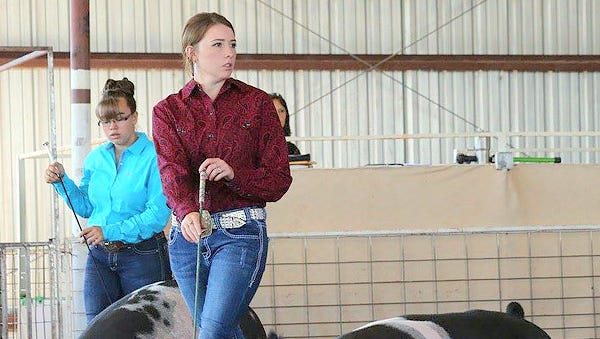 The Pig Show will be Thursday at 9 a.m. at the 2016 Grant County Fair that will be held in Cliff.