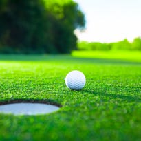 Golf federation elects board members