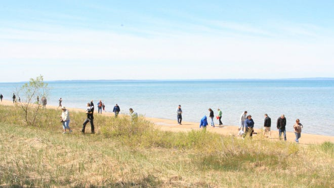 The Petoskey stone hunt, held on a half-mile strip of shore, is a highlight of the annual Antrim County Petoskey Stone Festival, set for Saturday.