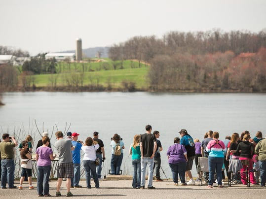 A large crowd gathers to view an eagles nest across Lake Marburg in Codorus State Park on Sunday, April 12, 2015. Captivated by a webcam, onlookers flocked to the park by the hundreds to try and catch a real-life glimpse.