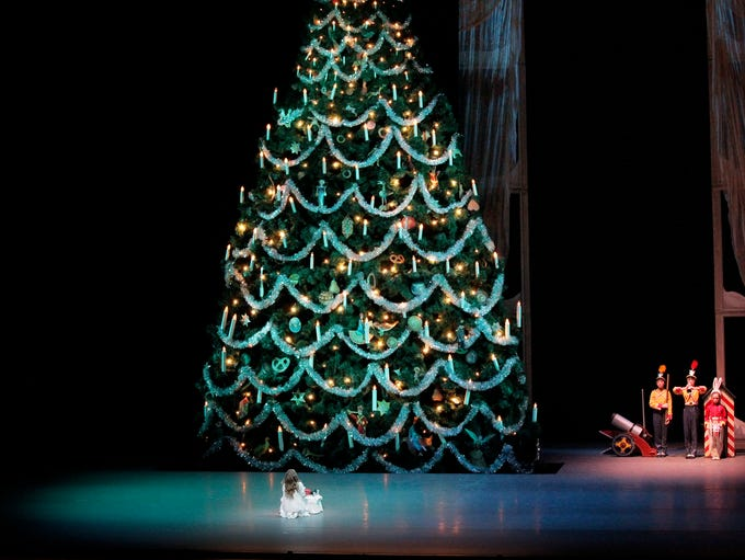 The appearance of the majestic Christmas tree is a