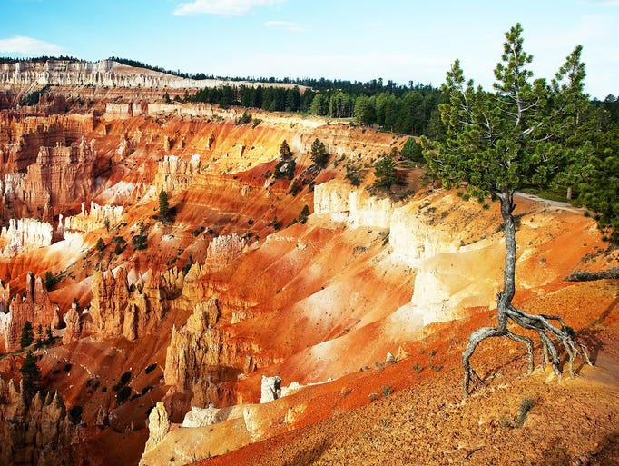 bryce canyon national park black dating site Greater southern utah & zion area map  bryce canyon – bryce canyon national park is a scientist's laboratory and a child's  black lava formations,.