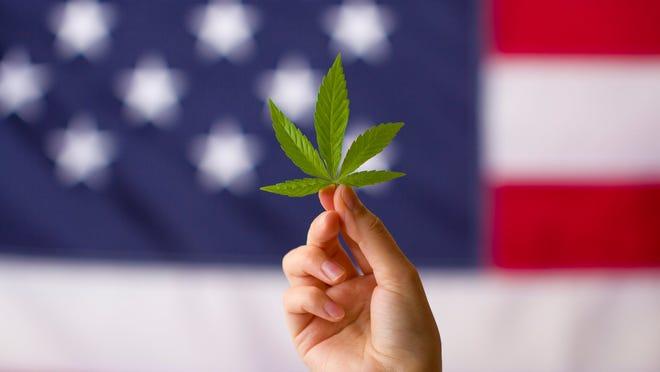 Marijuana leaf with U.S. flag in the background.
