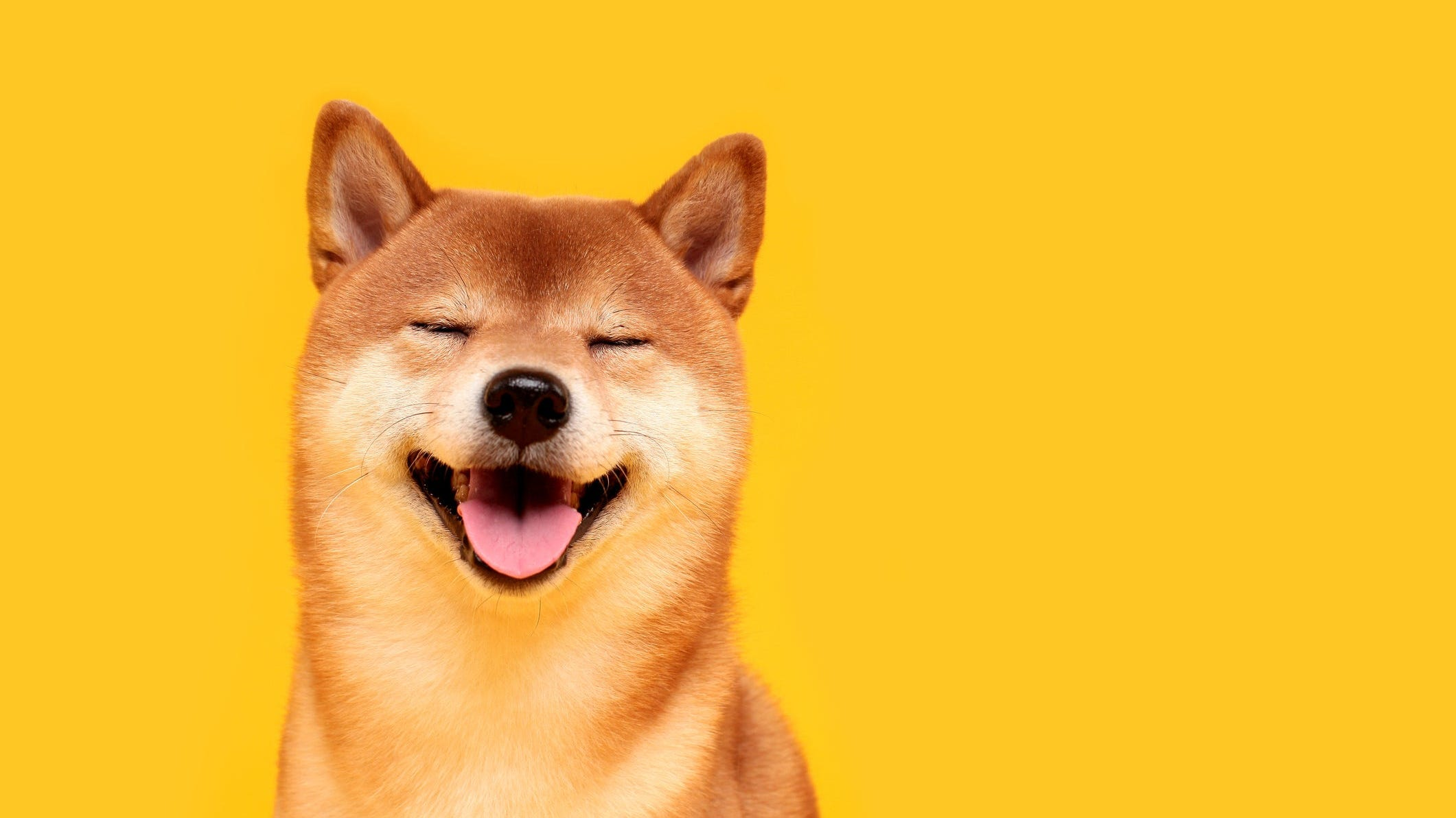 Why is Dogecoin shooting higher this week?