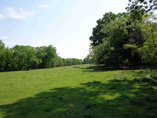 Koehler Farm 2