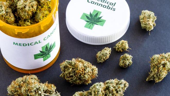 Medical marijuana buds.