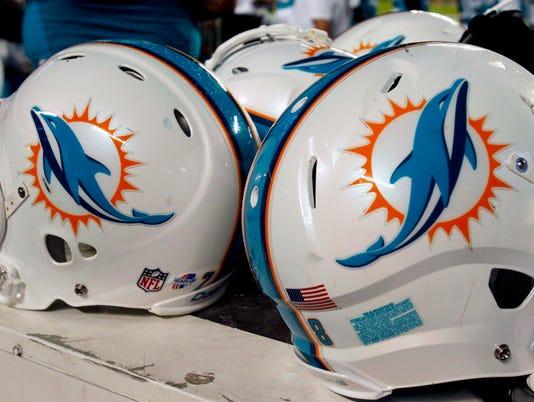 2013-11-19-dolphins-helmet